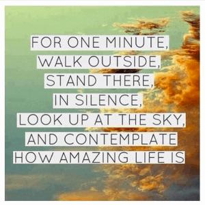 How amazing life is
